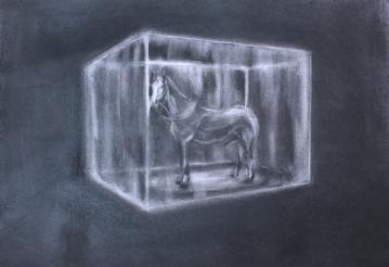 - Bob Barton | Horse